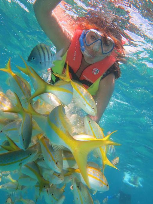 excursion-para-ver-peces-de-colores